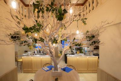 Image représentant la salle du rez-de-chaussée décorée comme le reste du restaurant en jaune et bleu, avec des produits italiens. Il y a également le citronnier de l'entrée du restaurant. Il donne une ambiance chaleureuse et typique italienne.